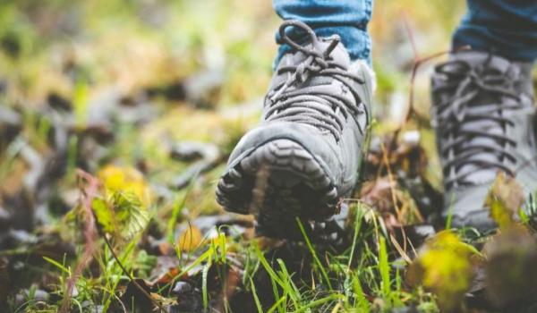elke vrijdag: Een uurtje wandelen (ism Femma)